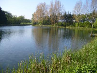 Salford Trout Lakes